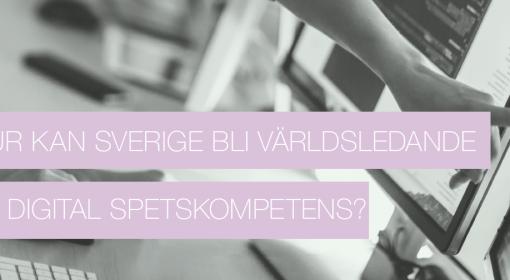 Swedsoft rapport 2020